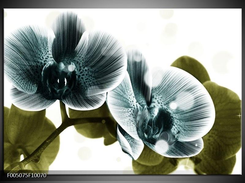 Glas schilderij Orchidee | Blauw, Groen