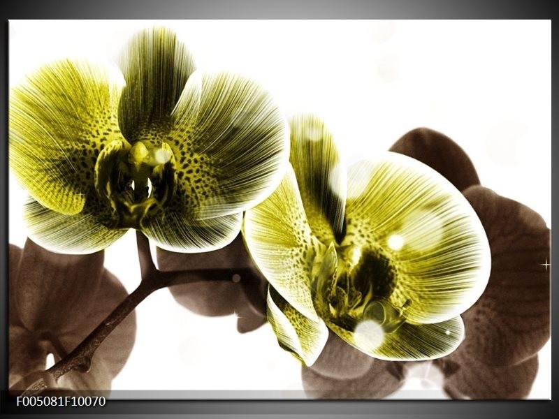 Glas schilderij Orchidee   Geel, Grijs