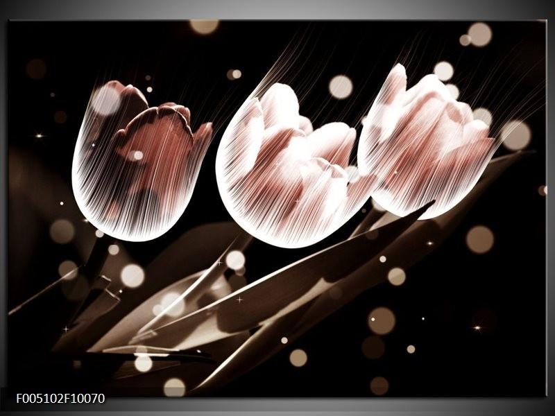 Glas schilderij Tulp | Wit, Grijs
