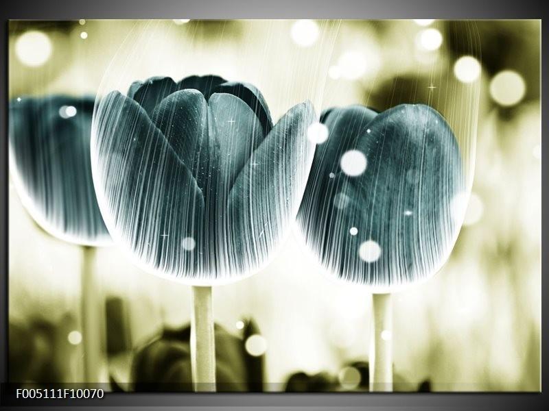 Glas schilderij Tulp | Blauw, Wit