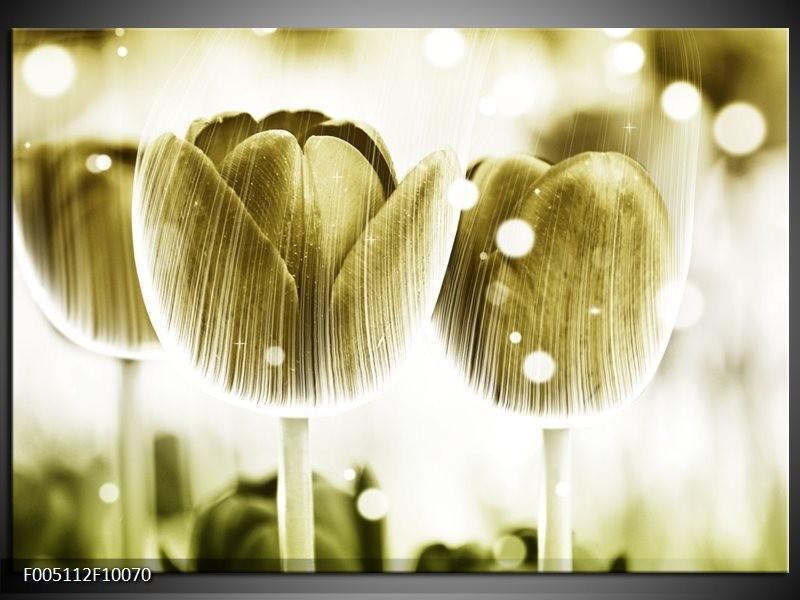Glas schilderij Tulp | Geel, Wit