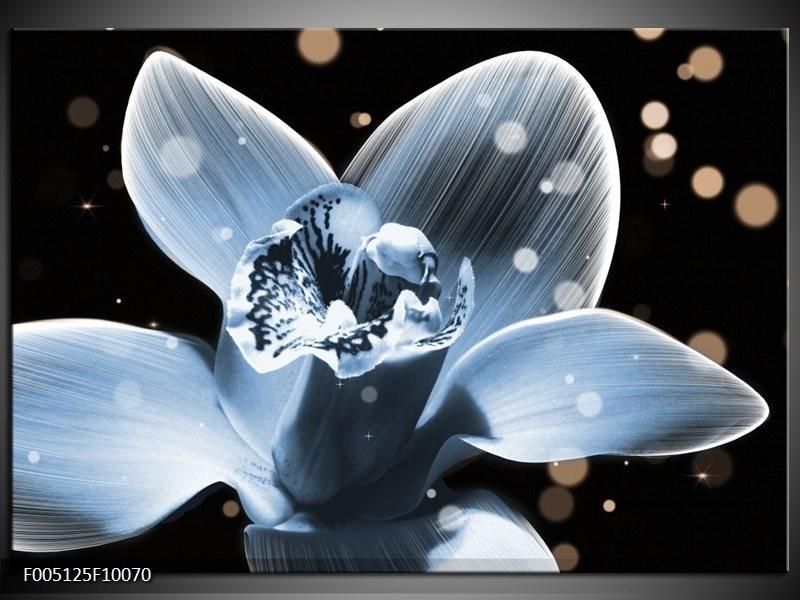 Glas schilderij Iris | Blauw, Zwart