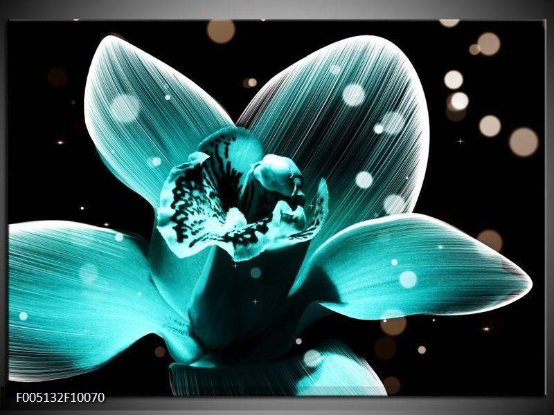 Glas schilderij Bloem | Blauw, Zwart