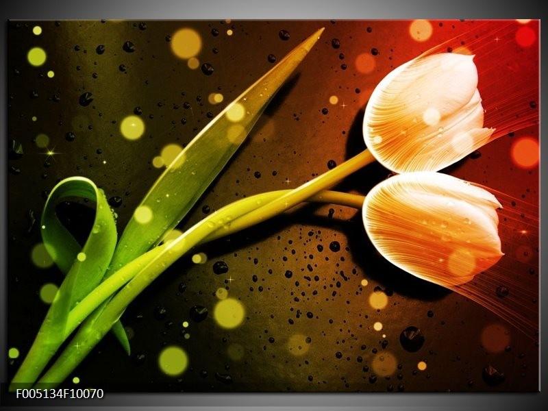 Glas schilderij Tulp   Oranje, Groen, Rood