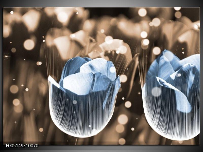 Glas schilderij Tulp   Blauw, Grijs