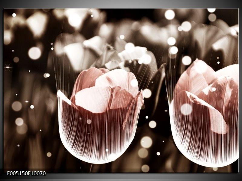 Glas schilderij Tulp | Bruin, Grijs