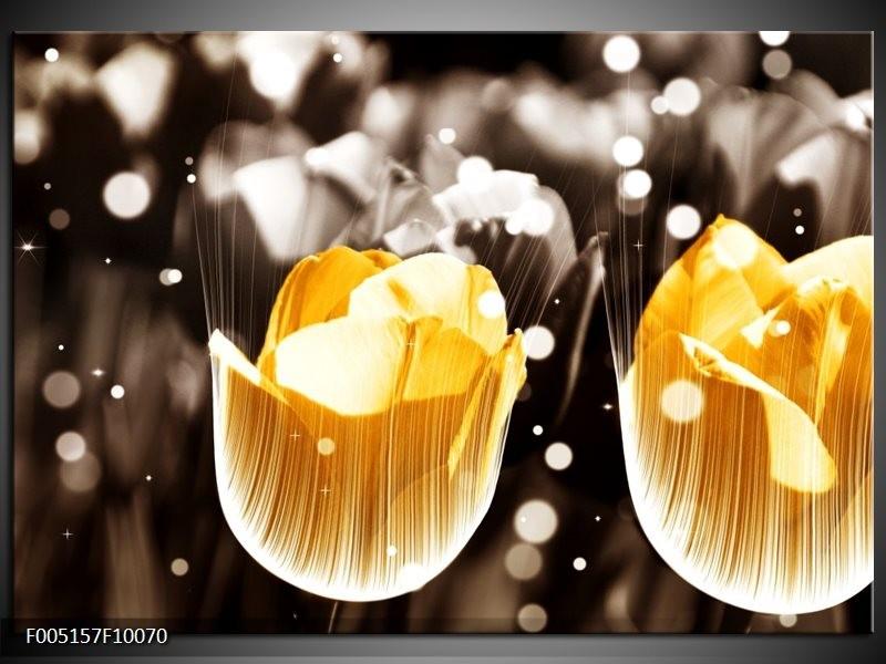 Glas schilderij Tulp | Geel, Grijs, Wit