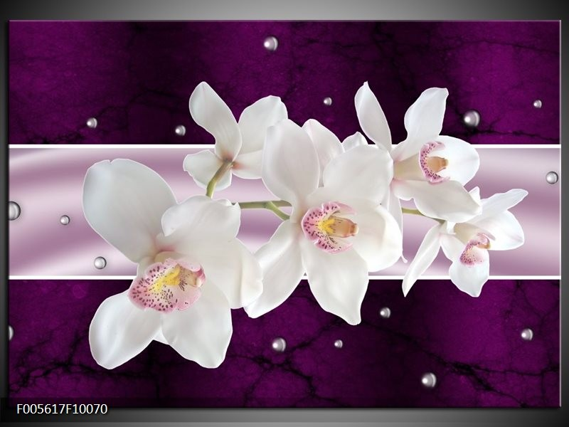 Glas schilderij Orchidee | Wit, Paars