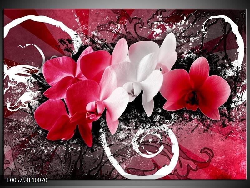 Glas schilderij Orchidee | Roze, Wit, Zwart