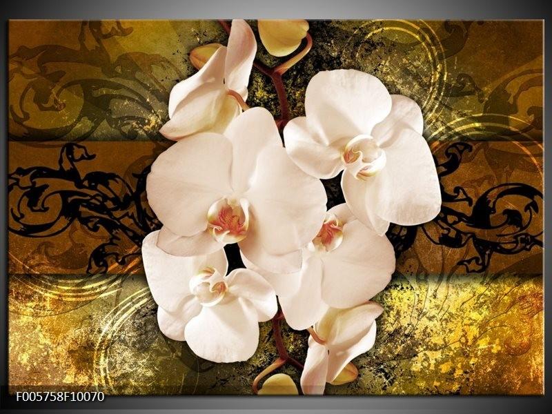 Glas schilderij Orchidee | Bruin, Goud, Crème