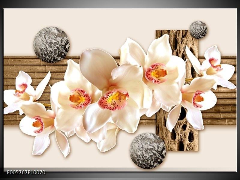 Glas schilderij Orchidee | Crème , Bruin