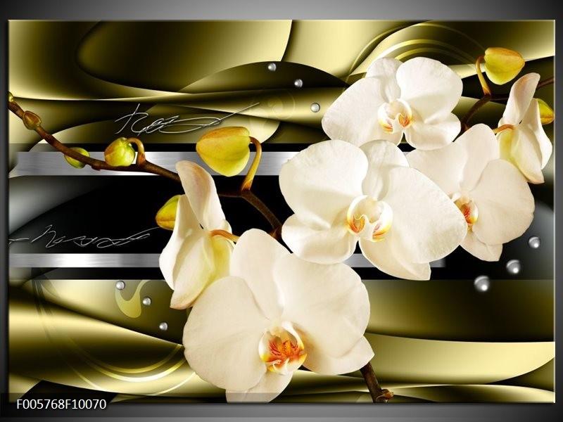Glas schilderij Orchidee   Groen, Crème