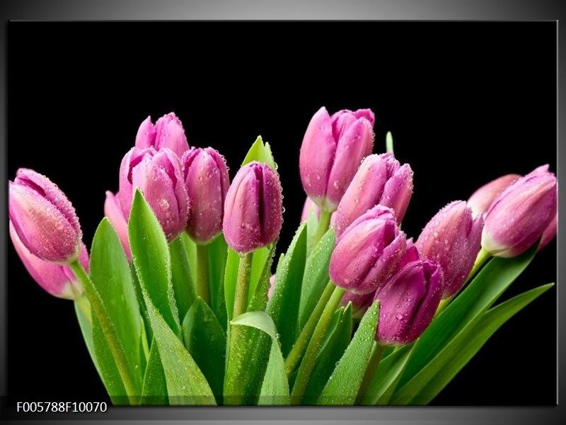 Glas schilderij Tulpen | Roze, Zwart, Groen