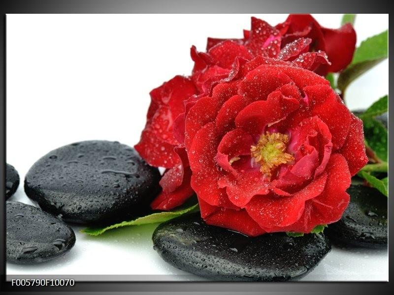 Glas schilderij Roos | Rood, Zwart, Wit