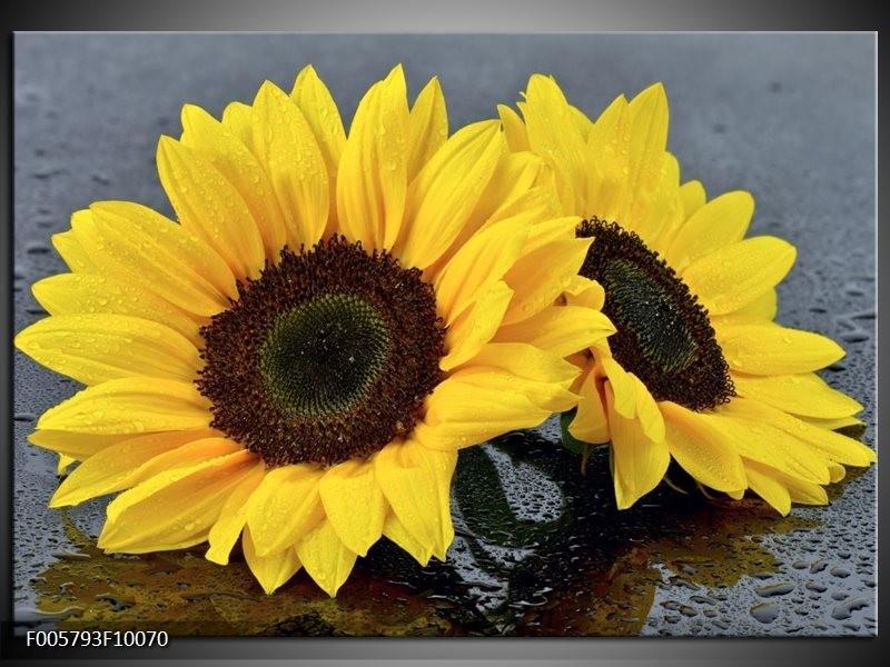 Glas schilderij Zonnebloem | Geel, Zwart
