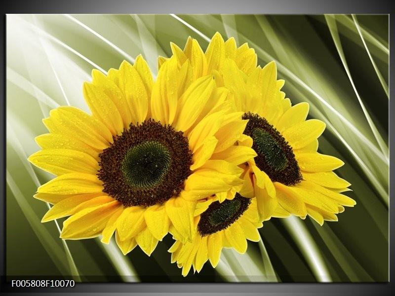 Glas schilderij Zonnebloem | Groen, Geel