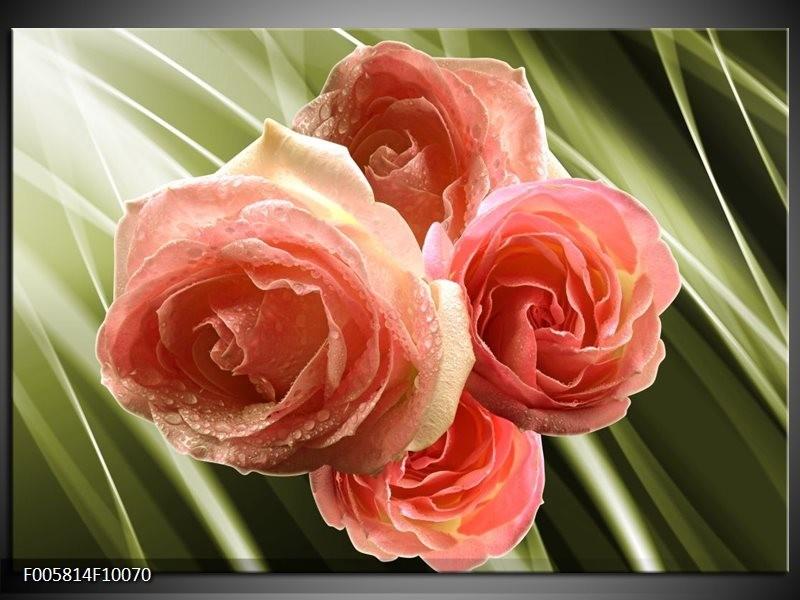 Glas schilderij Roos | Roze, Groen