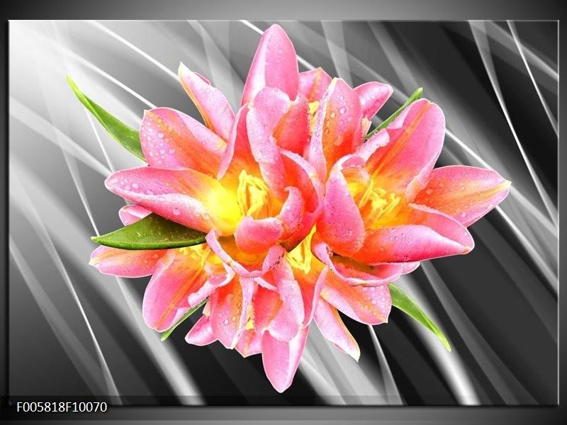 Glas schilderij Modern | Roze, Grijs, Geel