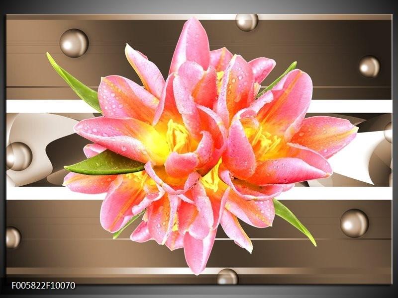 Glas schilderij Modern | Bruin, Roze