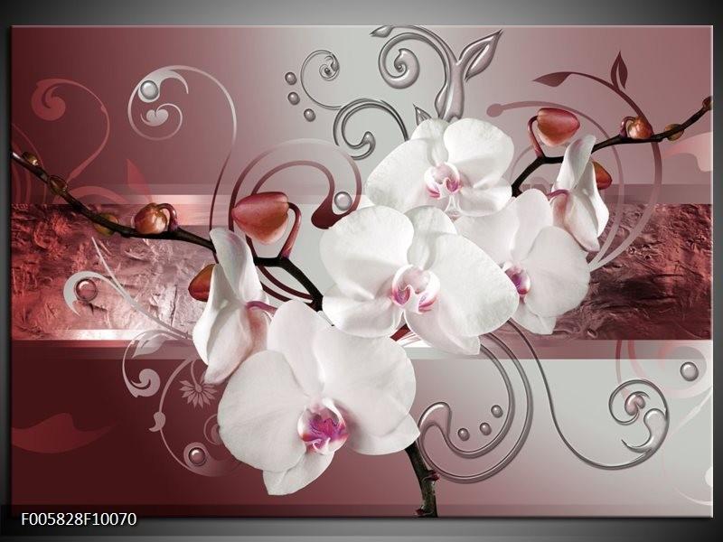 Glas schilderij Orchidee | Wit, Grijs