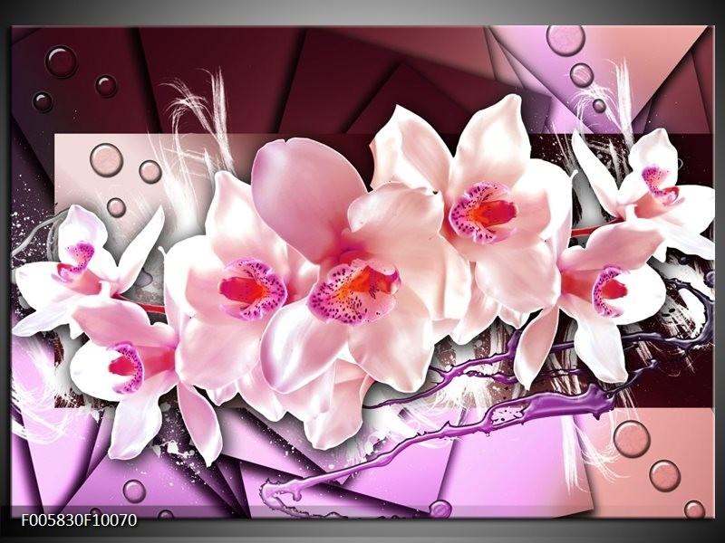 Glas schilderij Orchidee | Paars, Roze, Wit