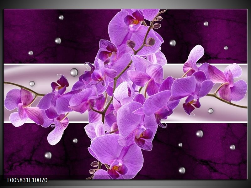 Glas schilderij Orchidee   Paars