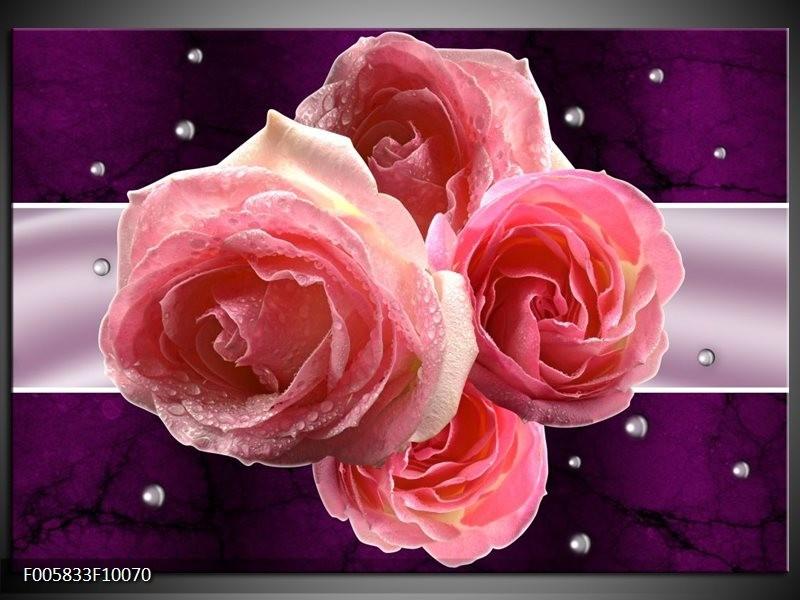 Glas schilderij Roos   Paars, Roze