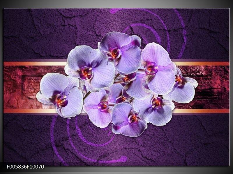 Glas schilderij Orchidee | Paars