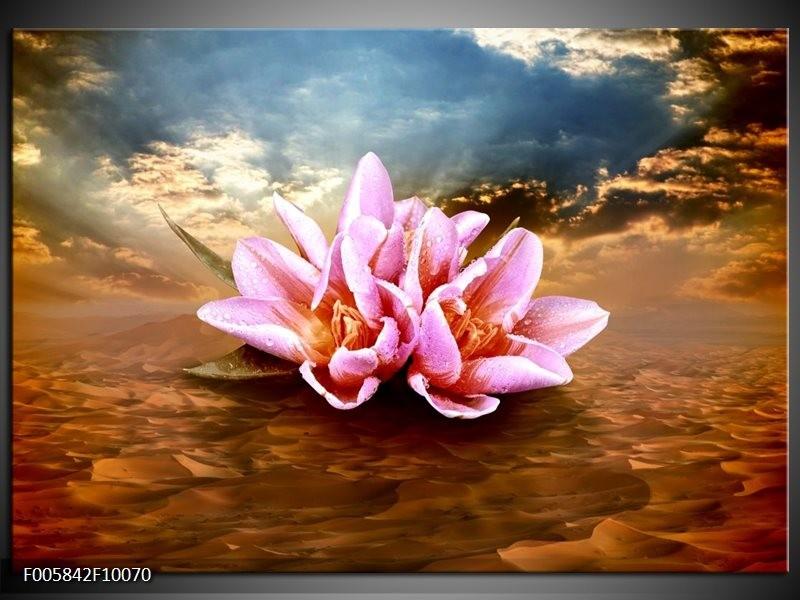 Glas schilderij Abstract   Roze, Bruin