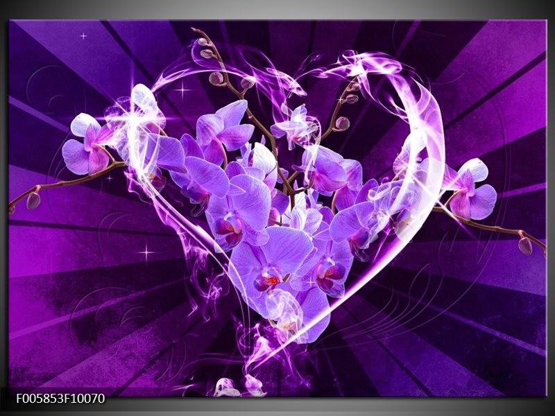 Glas schilderij Orchidee   Paars, Roze