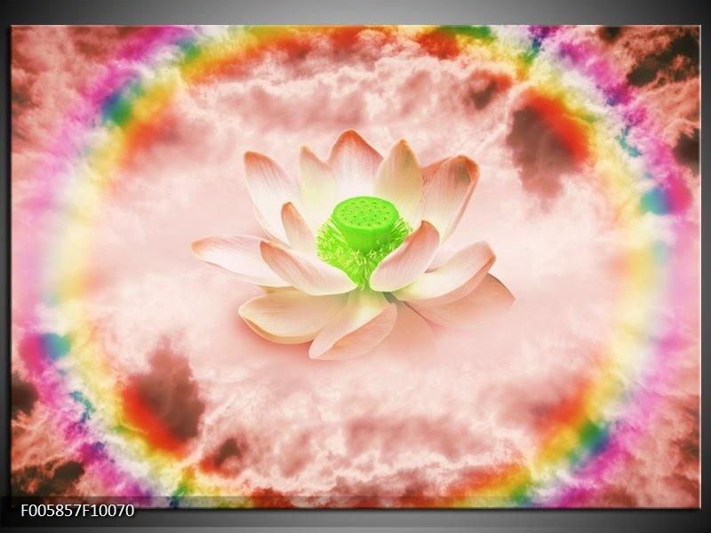 Glas schilderij Lelie | Roze, Groen