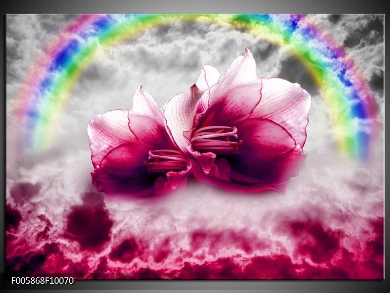 Glas schilderij Lelie | Roze, Grijs