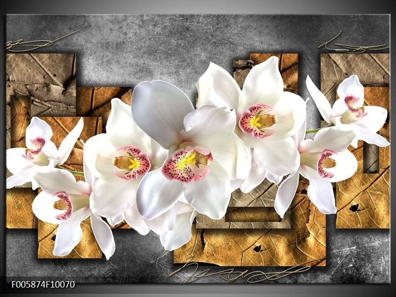 Glas schilderij Orchidee | Grijs, Bruin, Wit