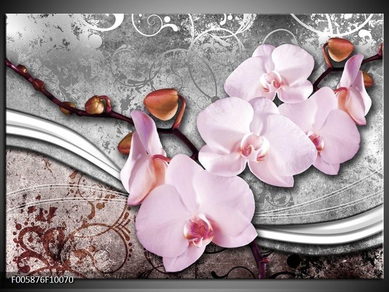 Glas schilderij Orchidee | Roze, Grijs
