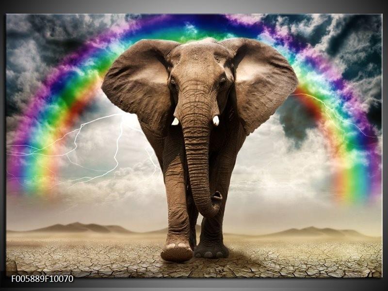 Glas schilderij olifant grijs groepart for Schilderij olifant