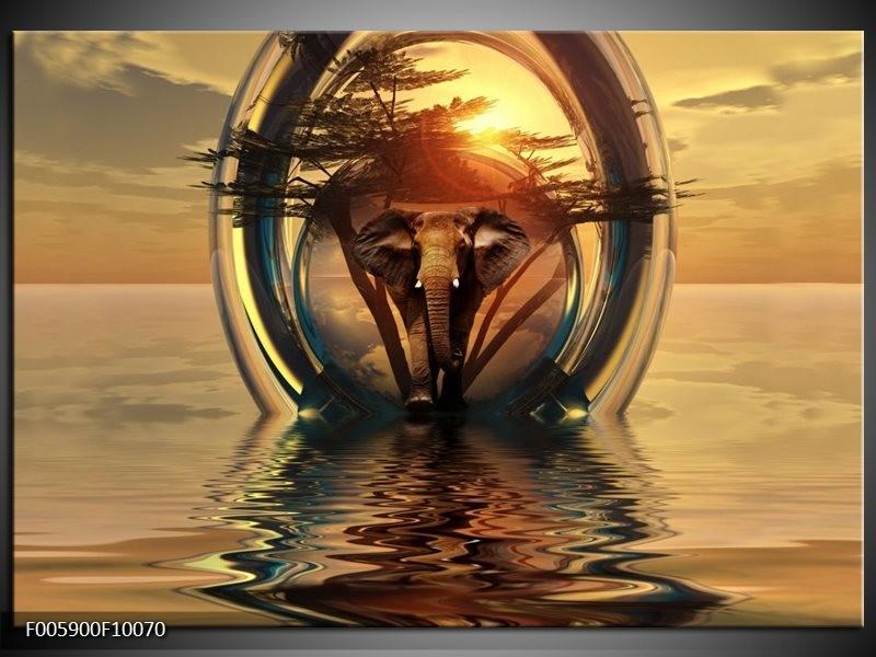 Glas schilderij Olifant | Goud, Bruin