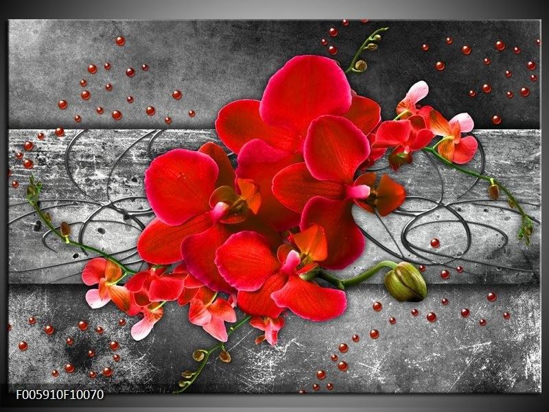Glas schilderij Orchidee | Rood, Grijs
