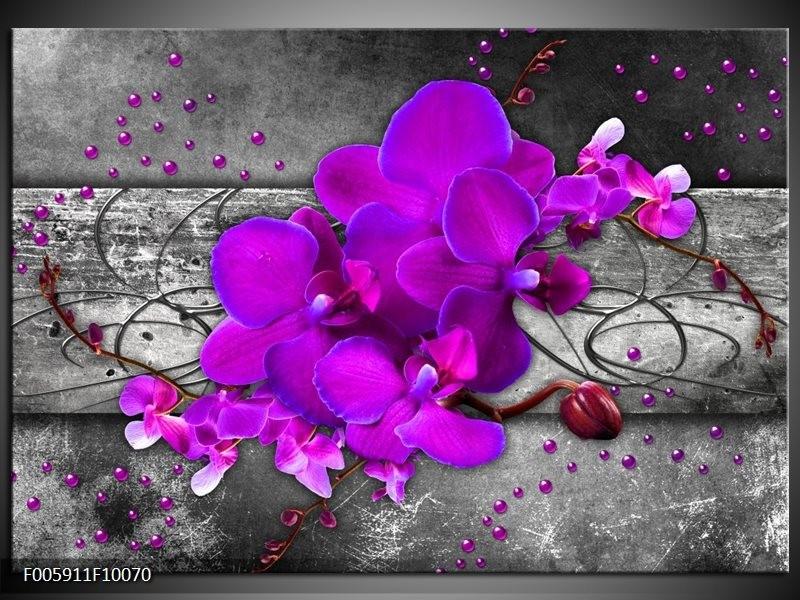 Glas schilderij Orchidee   Paars, Grijs