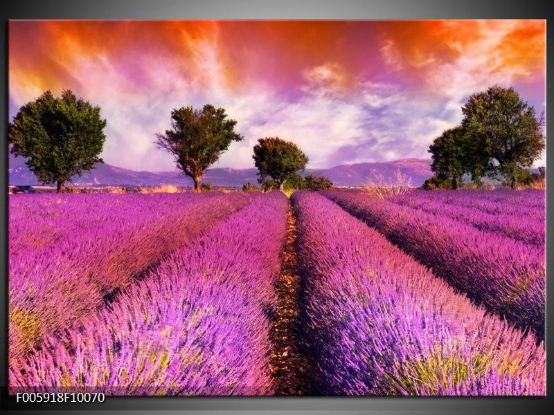 Glas schilderij Landschap | Roze, Oranje, Grijs