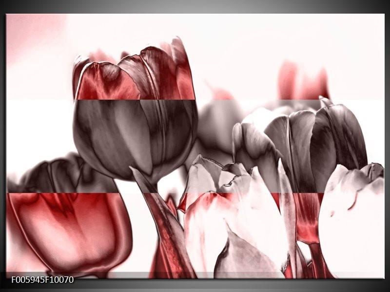 Glas schilderij Tulp | Rood, Wit, Bruin