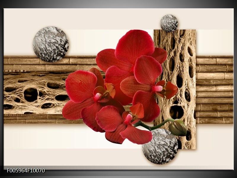 Glas schilderij Orchidee | Rood, Bruin, Wit