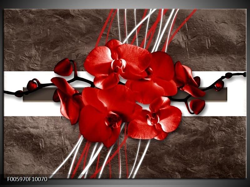 Glas schilderij Orchidee   Rood, Bruin, Wit