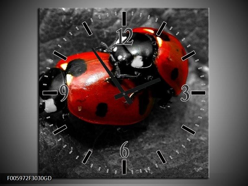 Wandklok op Glas Lieveheersbeestje | Rood, Zwart, Grijs | F005972CGD