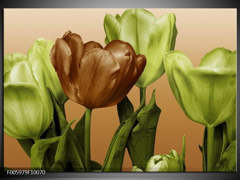 Glas schilderij Tulp | Groen, Bruin, Wit