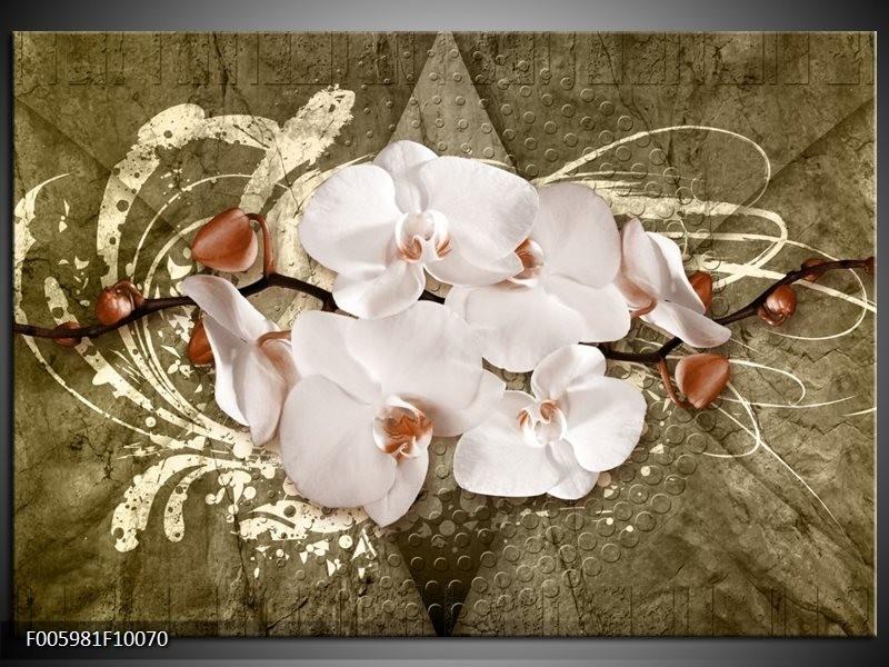 Glas schilderij Orchidee | Goud, Wit, Bruin