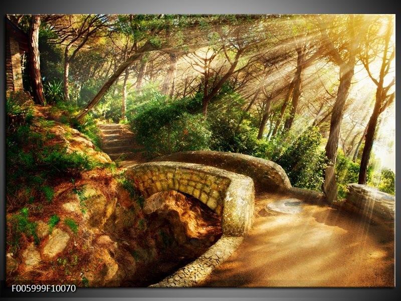 Glas schilderij natuur bruin groen groepart for Schilderij natuur