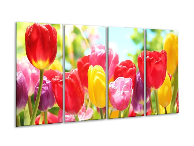 Glas schilderij Tulpen | Rood, Geel, Paars | 160x80cm 4Luik