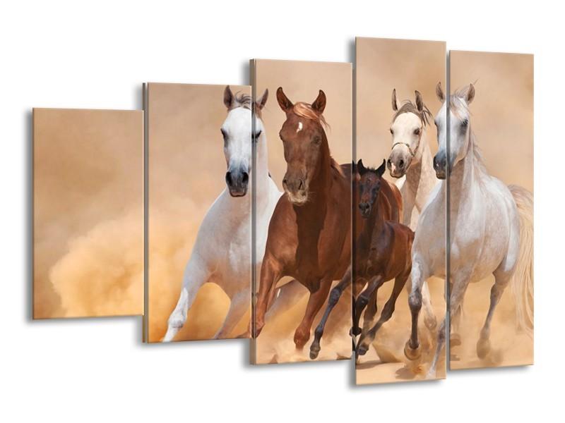 Canvas schilderij Paard   Bruin, Wit, Crème   150x100cm 5Luik