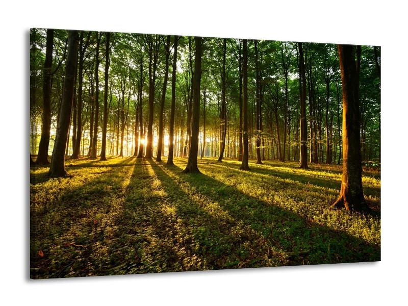 Canvas schilderij Natuur   Groen, Geel   140x90cm 1Luik