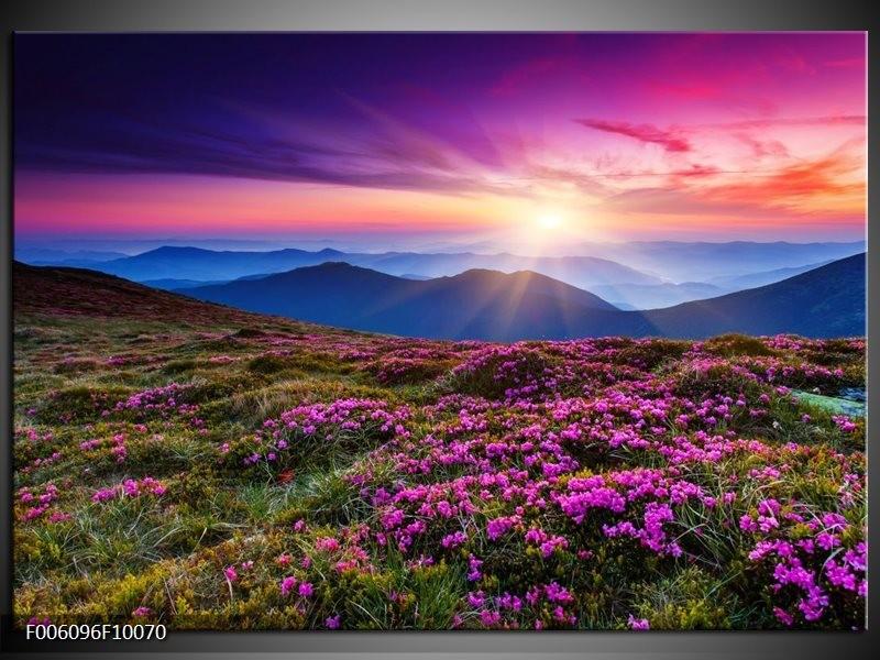 Glas schilderij Natuur   Paars, Roze, Blauw